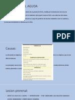 INJURIA RENAL AGUDA pediatria.pptx