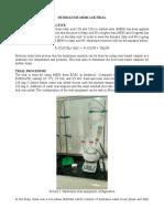 Hydrolysis ME80 Trial Report Part 1 Rev. 1