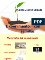 Experimento Alonso
