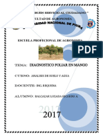 Diagnostico Foliar Del Mango