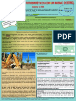 c3 y c4.pdf