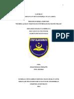 contoh_laporan_individu_KKN.docx