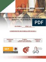 Planeacion Didactica de Fisica II 2010