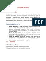 Surgencia y Pistoneo (Resumen)