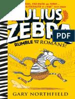 Julius Zebra - extended sampler