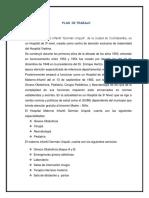 PLAN-DE-TRABAJO.docx