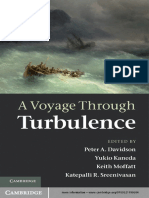 A_Voyage_Through_Turbulence.pdf