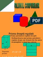 Arii Si Volumul-prisma