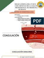Coagulacion Final
