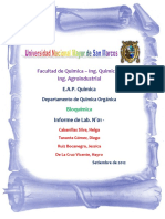 Informe N°01 - Bioquimica.docx