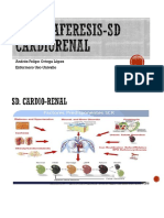 Plasmaferesis en Sd Cadiorenal