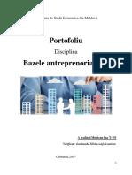 Portofoliul Bazele antreprenoriatului