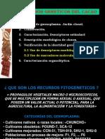 2recursosgeneticoscacao-170223040227.pdf
