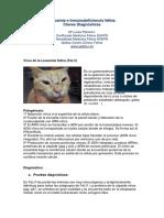 6ALeucemiaeInmunodeficienciafelinaClavesdiagnosticas