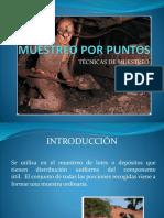 119392530-muestreo-por-puntos.pptx