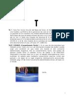 DICCIONARIO TECNICO T-Z.pdf