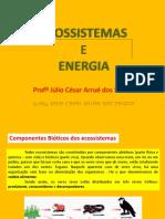 Ecologia Ecossistemas Energia