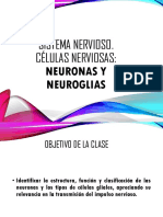 Celulas nerviosas 2017