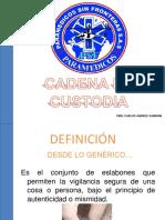CADENA DE CUSTODIA PSF.pdf