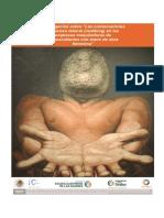 ags_meta8_2011.pdf