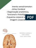 S4.1 Condições Neurológicas II 16-17