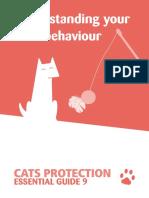Cat Behaviour Guide