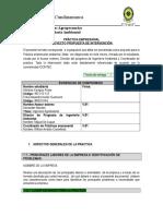 Formato Propuesta Practica Empresarial