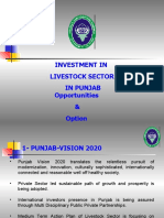 Investment Livestock Sector