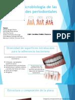 Microbiologia de las enfermedades periodontales karol.pptx
