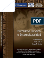 Sistema Juridico Interculturalidad
