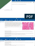 Cardio Histology 3