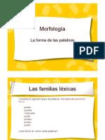 morfología.pdf