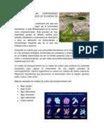 ANALISIS DE LAS COMUNIDADES MICROBIANAS BASADOS EN TECNICAS DE CULTIVO.docx