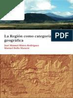 la región como categoría geográfica