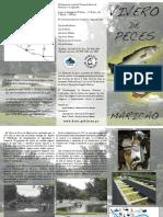 Brochure Maricao Espa