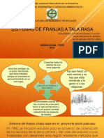 Sitemas de Franjas a Tala Rasa