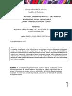 Doctrina de La CC Sobre La Carga de La Prueba, Lic. Leonel Caniz