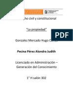 Derecho Civil y Constitucional