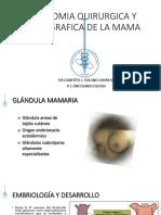 anatomiaquirurgicaytopograficadelamama-160703133606