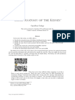 Gross Anatomy of the Kidney 3