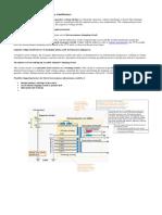 CVT & PLCC Document