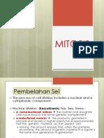 2._Mitosis