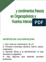 Hortalizas y Cond. Frescos en Organopónicos y Huertos Intensivos