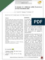 Biology and Growth Dynamics of a Hillstream Catfish Pseudecheneis