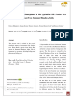 Studies on Sexual Dimorphism in the Cyprinidae Fish Puntius Ticto