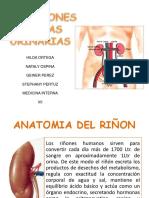 21094753-Infecciones-de-Vias-Urinarias.ppt