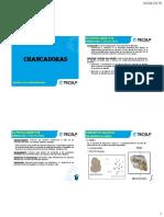 chancadoras-2016.pdf