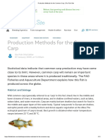 Production Methods for the Common Carp _ the Fish Site