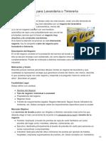1000ideasdenegocios.com-Plan de Negocio Para Lavandería o Tintorería