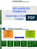Descrisao Analise Cargo V1